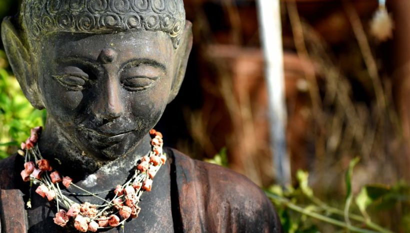 DETOX DISINTOSSICAZIONE YOGA MEDITAZIONE TAI CHI TOSCANA BUDDA BUDDISMO